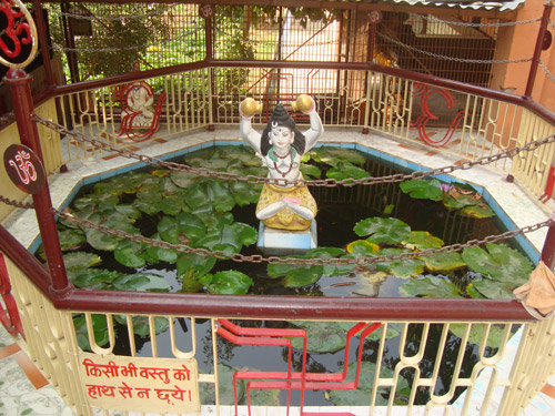 Beautiful pond in ashram