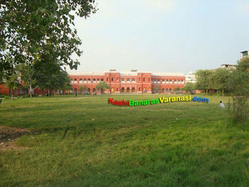 CM Anglobengali College Varanasi